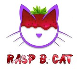 CopyCat Aroma RASP B. CAT 10ml