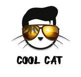 CopyCat Aroma COOL CAT 10ml