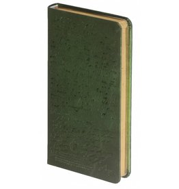 Dreamnotes D1022-2 Dreamnotes notebook Manuscript 17,5 x 9 cm Green