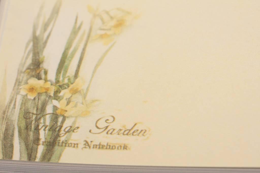 Dreamnotes Dreamnotes notitieboek mijn Victoria: gele roos 9 x 14 cm