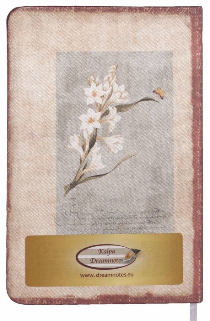 Dreamnotes Dreamnotes notitieboek mijn Victoria: witte orchidee 9 x 14 cm