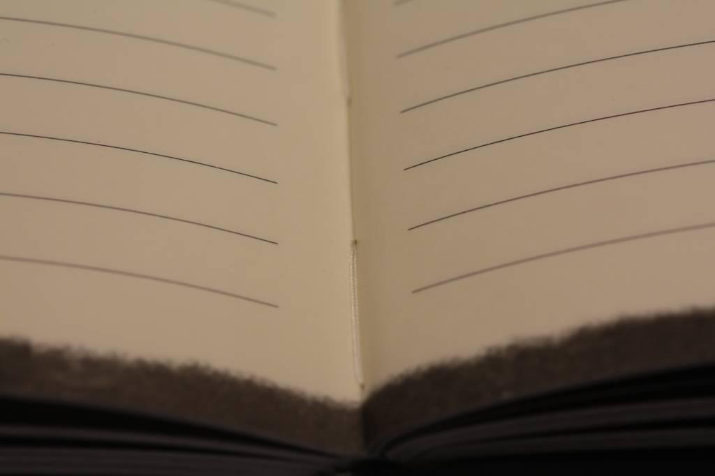 Dreamnotes Dreamnotes notitieboek sterrenbeeld: maagd 19 x 13,5 cm