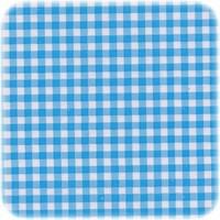 Mexicaans Tafelzeil 3m bij 1,20m Ruitje lichtblauw