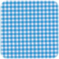 Mexicaans Tafelzeil vierkant 1,20m bij 1,20m Ruitje lichtblauw