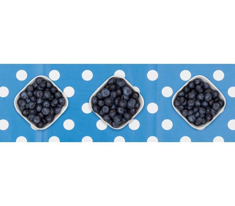 Europees Eco tafelzeil Rol 20m blauw-wit grote stip 140cm