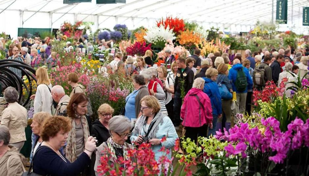 Sneeboer at the RHS Chelsea Flower Show 24 – 28 May 2016
