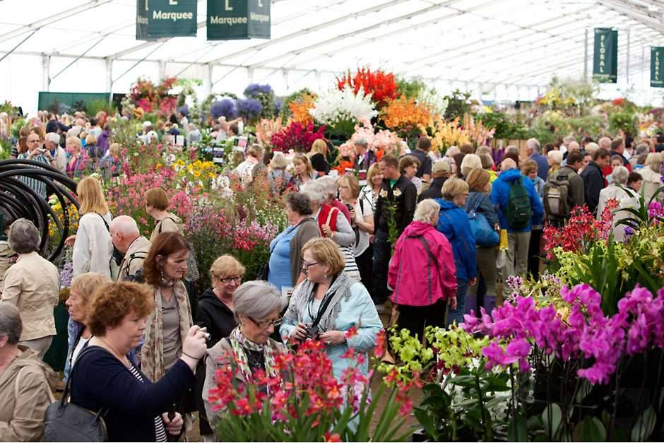 news sneeboer at the rhs chelsea flower show 24 28 may