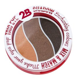2B Cosmetics TRIO EYE SHADOW MIX & MATCH - ORANGE/BROWN