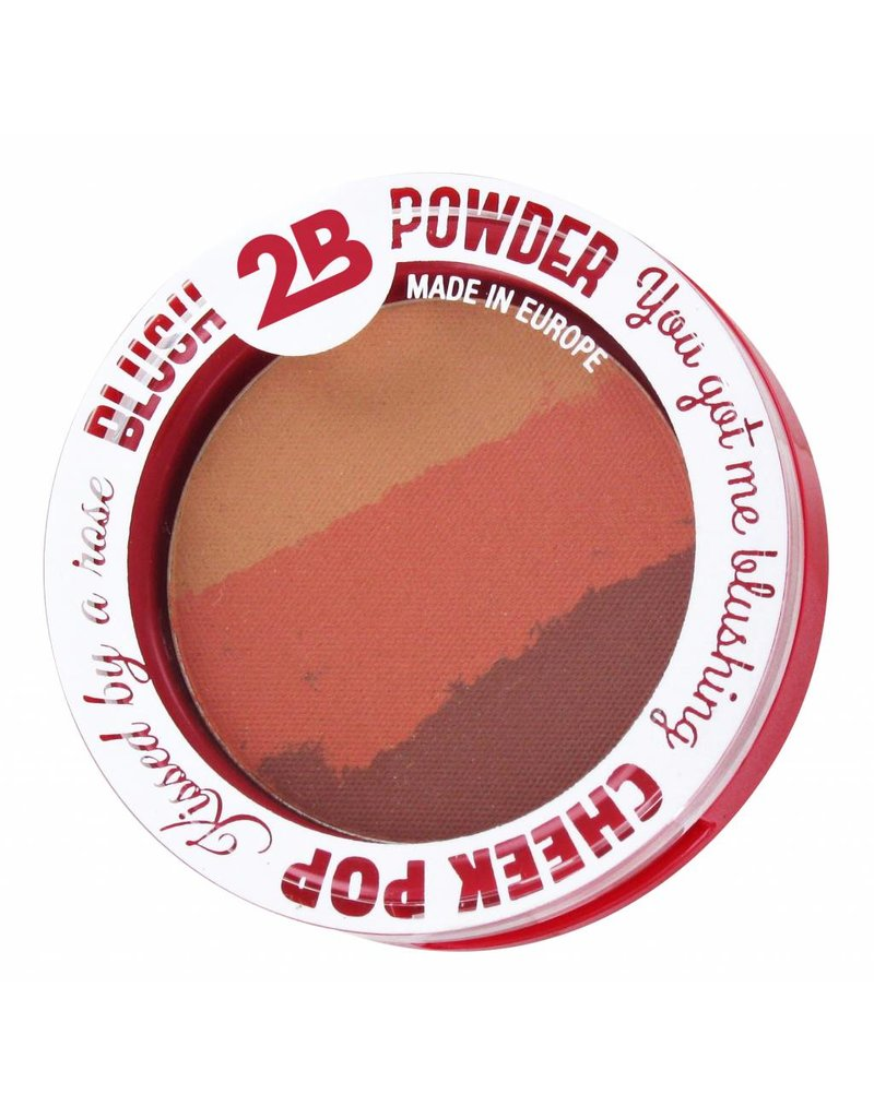 2B Cosmetics BLUSH TRIO 02 ORANGE