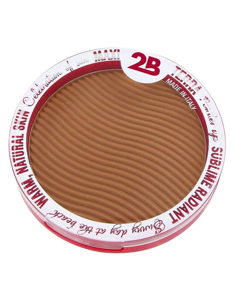 2B Cosmetics Maxi Terra Powder 01