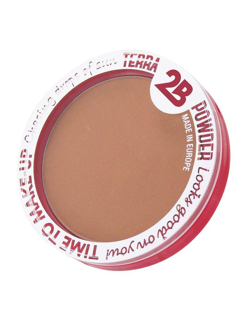 2B Cosmetics Terra Powder 01
