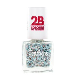 2B Cosmetics Nail polish Feathers 614 Multicolored Silver