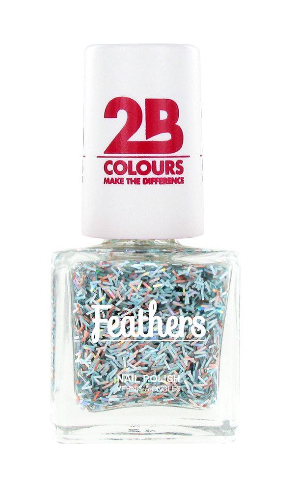 2B Cosmetics Nagellak Feathers 614 Multicolored Silver