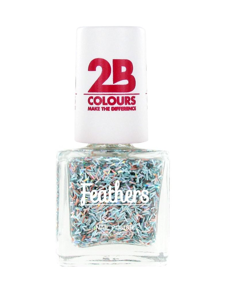 2B Cosmetics Vernis à ongles Feathers 614 Multicolored Silver