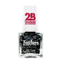 2B Cosmetics Nail polish Feathers 615 Silver & Black
