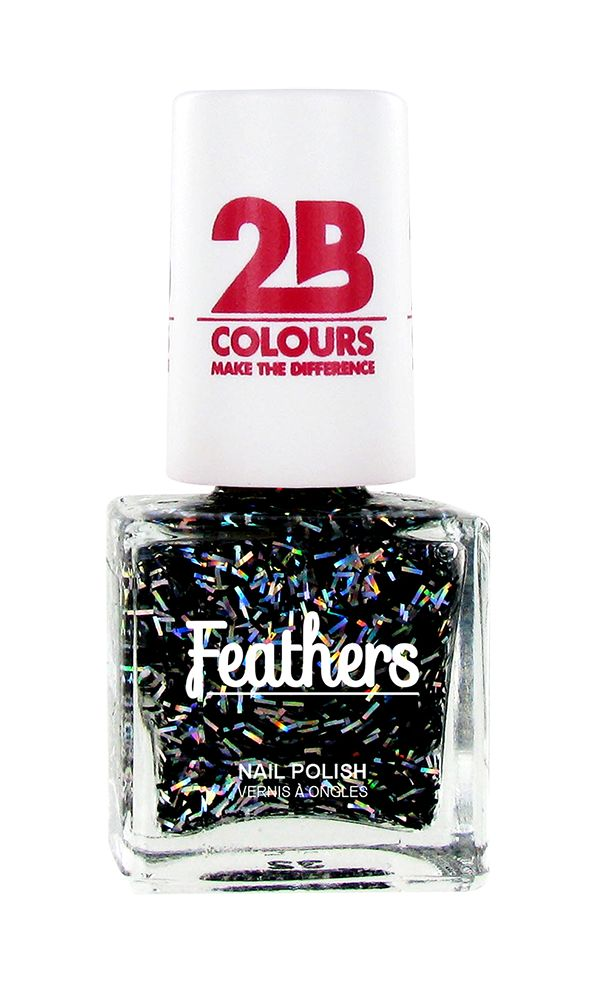 2B Cosmetics Vernis à ongles Feathers 615 Silver & Black