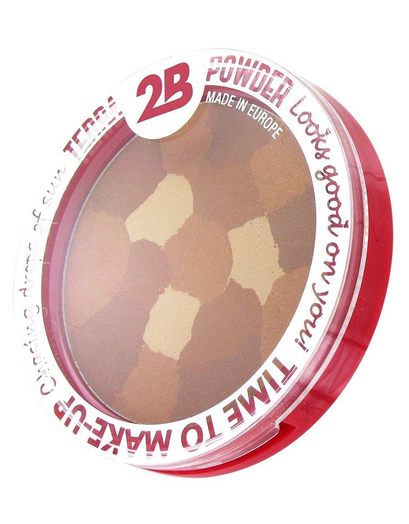 2B Cosmetics Terra mosaïque