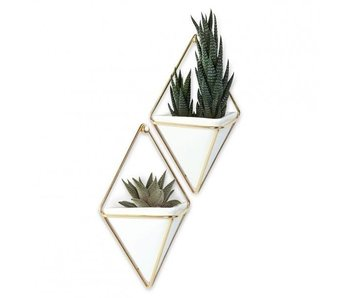 Wall Vessel Set 'Trigg' (gold)