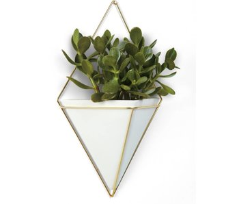 Wall Vessel 'Trigg' XL (gold)