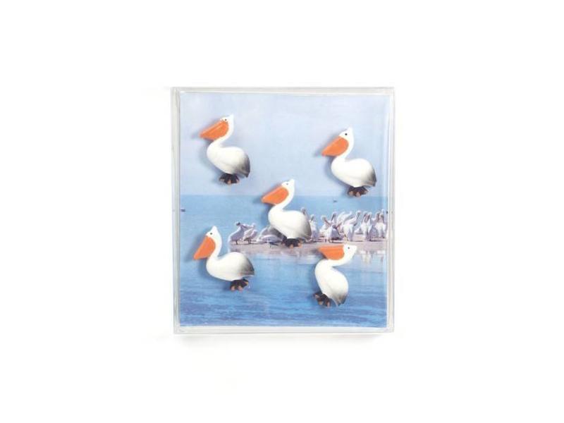 Trendform Magnets 'Pelican'