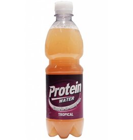 12x 500ml Reasons Protein Water