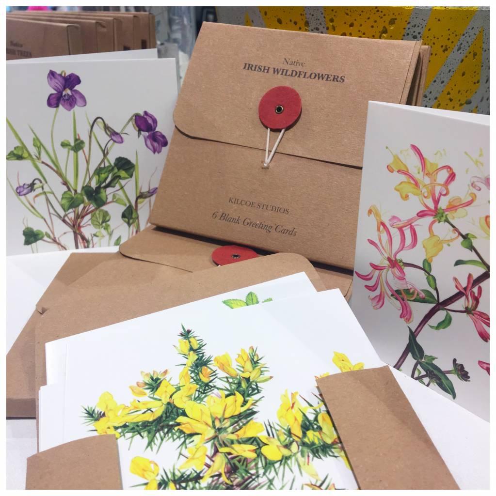 Kilcoe studios irish wildflowers greeting card pack my shop 6 pack of greeting cards irish wildflowers m4hsunfo