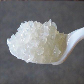 Yoghurtplantje