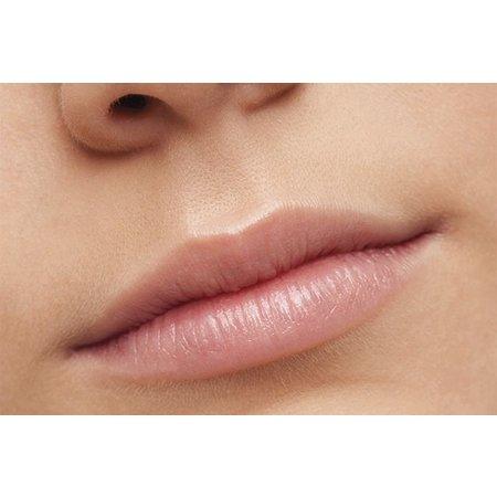 Alassala naturlig læbepomade stick mynte 10g