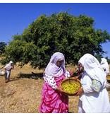 Alassala Marokkaanse Argan olie Bio 100 ml