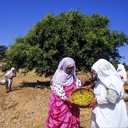 Alassala Marokkanisches Arganöl - 100ml