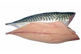 Makreel 2 filet's (ca. 150 gr.)