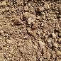 Potting Soil 8