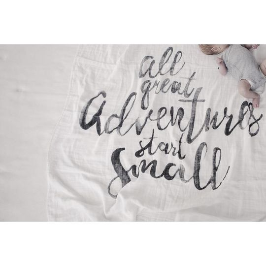 mies & co swaddle blanket great adventures