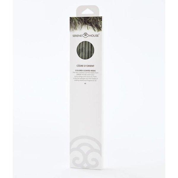 Cèdre d'Orient – farbige Parfüm-Sticks