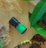 Instant Fresh - natural essential oil