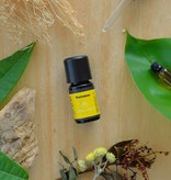 Motivation - natural essential oil