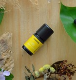 Creativity - natural essential oil