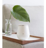Scent Pot - Scentilizer®