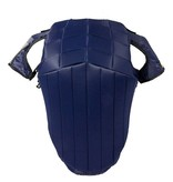 Hows Racesafe Shoulder protectors for RS 2010