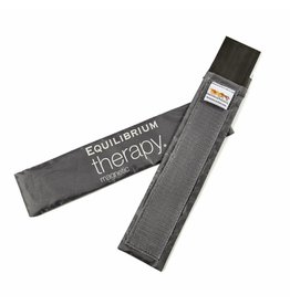 Equilibrium Magnetic back pad spare magnets - 4 small