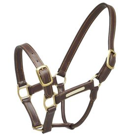 Zilco Aintree leather headcollar