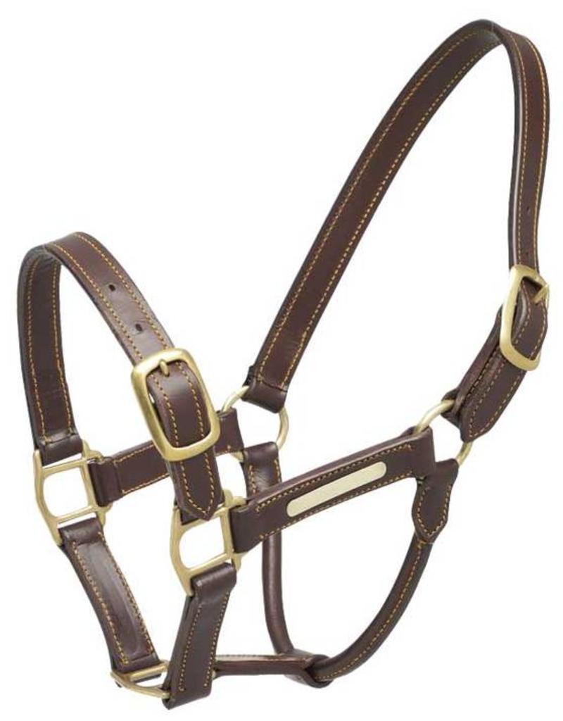Zilco Aintree leather headcollar