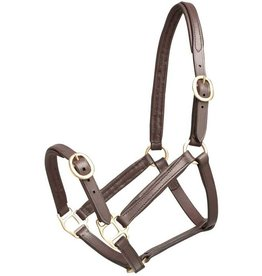 Zilco Leather halter large foal