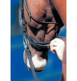 Prolite Nose band cushion