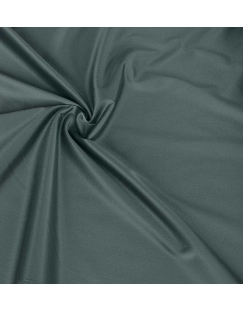 Glanz Baumwolle Uni S24 - grün / grau