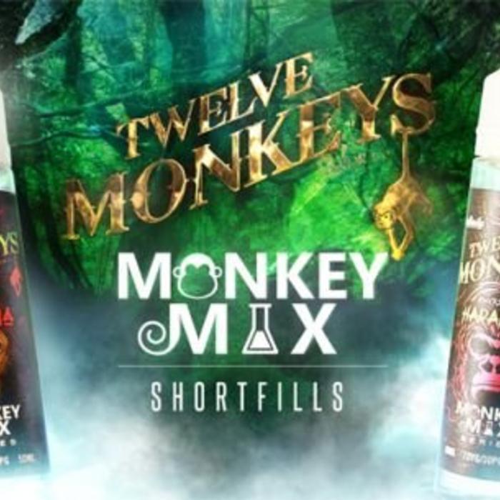 12 MONKEYS - MONKEY MIX