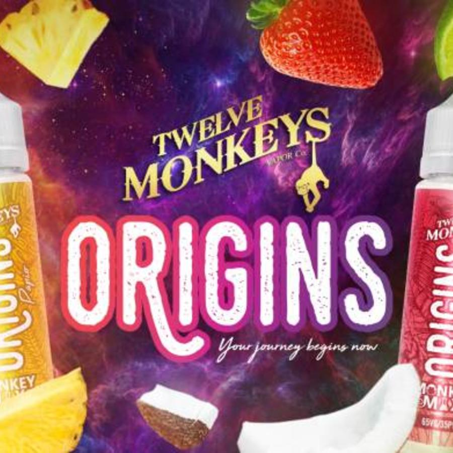 12 MONKEYS - ORIGINS