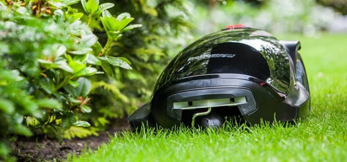 Is jouw gras groener dan dat van de buren?