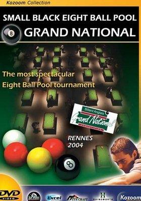 Afbeelding van Boeken, drukwerk en dvd Biljart DVD Grand National 8Pool Rennes 2004