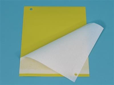 Klæbeplader - gul [20 x 20 cm]